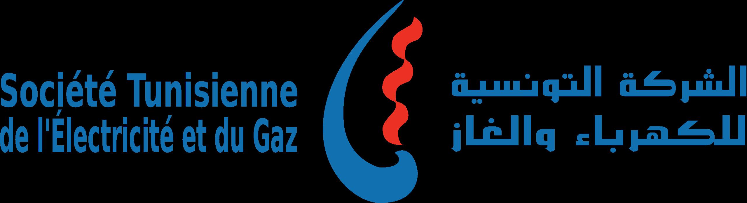 logo-steg